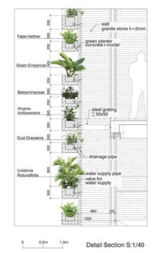 AECCafe.com - ArchShowcase - Green Home in Ho Chi Minh City, Vietnam by Vo Trong Nghia Architects