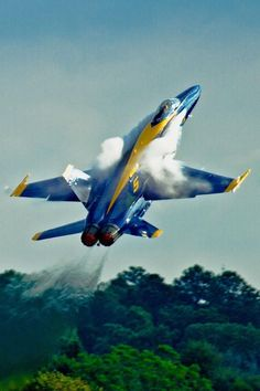 Us Fighter Jets, Air Fighter, Fighter Aircraft, Us Military Aircraft, Military Jets, Us Navy Blue Angels, Aircraft Pictures, Jet Plane, Air Show