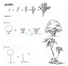 点击查看源网页 Landscape Architecture Drawing, Landscape Sketch, Garden Architecture, Urban Landscape, Landscape Design, Garden Design, Plant Sketches, Tree Sketches, Basic Drawing