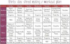 Super shred diet plan pdf - South beach diet agave
