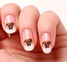 £1.99 GBP - 20 Nail Art Stickers Transfers Decals 664 - Boxer - Dog Just Peel & Stick #ebay #Fashion