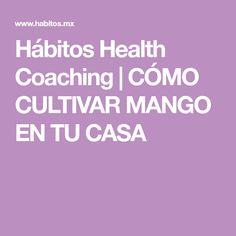 Hábitos Health Coaching | CÓMO CULTIVAR MANGO EN TU CASA
