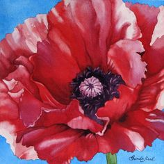 Scarlet Poppy Painting by Brenda Jiral - Scarlet Poppy Fine Art Prints and Posters for Sale
