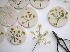 Wonderful Pictures Air dry Clay mobile Ideas otchipotchi: on my working table today – Fennel flower heads on air drying clay ♥ Art For Kids, Crafts For Kids, Arts And Crafts, Art Crafts, Decor Crafts, Paper Crafts, Kids Diy, Ceramic Jewelry, Polymer Clay Jewelry