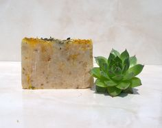 THERMAL SPA soap after sun soap swimming soap natural handmade soap luxury thermal soap Summer Sempervivum