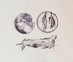 Macabre drypoint etching, handmade nightjar bird claws, strange round gravure print, odd tender feather birthday A4 boho art gift for her