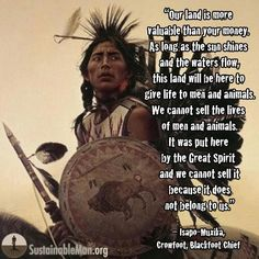 Discover and share American Indian Warrior Quotes. Explore our collection of motivational and famous quotes by authors you know and love. Native American Prayers, Native American Spirituality, Native American Cherokee, Native American Wisdom, Native American Beauty, Native American Tribes, Native American History, American Indians, American Symbols