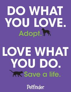 After adopting a #pet, it's sometimes hard to figure out who saved who.