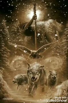 Wolf Images, Wolf Photos, Wolf Pictures, Arte Viking, Viking Art, Viking Woman, Fantasy Wolf, Dark Fantasy Art, Wolf Tattoos Men
