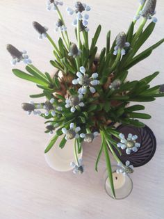 [ vår ] Love Flowers, Bouquet, Contemporary, Spring, Floral, Garden, Plants, Inspiration, Design