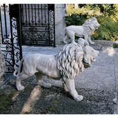 I love these lions.  Had two sets stolen from my home.  I miss them!