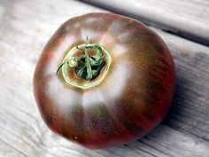 Are Cracked Tomatoes Still Edible? - If you see a tomato that is close to ripening begin to crack remove it and let it continue ripening on a windowsill or kitchen counter. Leaving it on the vine will just make the situation worse as the plant continues to absorb water.