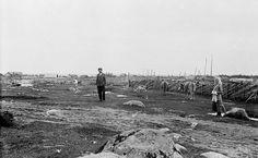 Нижние Никулясы. 1911
