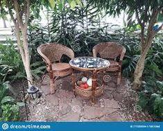 wicker furniture and green plants – RechercheGoogle Wicker Furniture, Outdoor Furniture Sets, Outdoor Decor, Wood Interiors, Green Plants, Google, Home Decor, Rattan Furniture, Interior Design