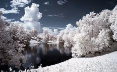 *** Awesome winter *** - drzewa, zima, jezioro, krajobraz