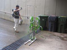 CTAHR spray coverage project