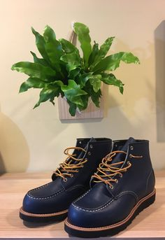 375ac7ddebb6f 75 Best Boots Shoes images in 2019
