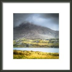 Find Your Way Home... Framed Print By Lynne  Douglas