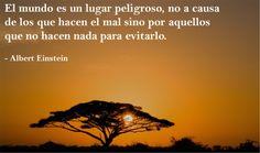 «El mundo es un lugar peligroso, no a causa de los que hacen el mal sino por aquellos que no hacen nada para evitarlo»