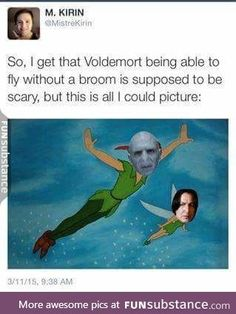 Why Voldemort Doesn't Have A Nose (Fandom Questions Series, - Reason Voldy's Mouldy Harry Potter Universe, Harry Potter World, Harry Potter Ron Weasley, Harry Potter Puns, Voldemort, Hogwarts, Doug Funnie, Desenhos Harry Potter, Yer A Wizard Harry