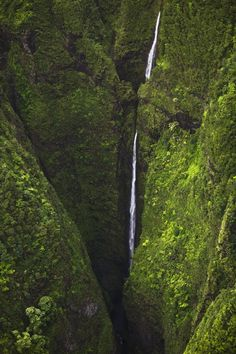 Sacred Falls waterfall cascading through rainforest valley, Sacred Falls State Park, Oahu, Hawaii. #waterfall #hawaii