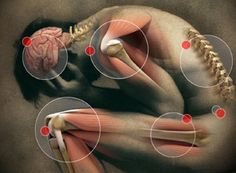 13 Foods That Fight Pain...http://improvedaging.com/13-foods-that-fight-pain/