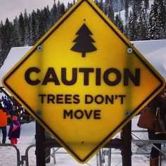 Caution- Trees don't move