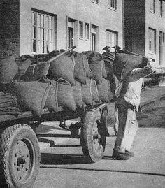 Een #kolenboer was iemand die in vroeger tijden kolen verkocht. De kolen werden per mud verkocht in kolenzakken. Ze werden meestal thuis bezorgd en door de kolenboer in de kelder of het kolenhok gestort.  De kolen werden meestal met paard en wagen rondgebracht en na 1945 vaak met een vrachtwagen. Toen steeds meer huishoudens overgingen op een petroleumkachel ging de kolenboer ook petroleum leveren en werd zo ook olieboer. Met de komst van het aardgas na 1960 verdween het beroep…