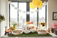 A Summer Picnic First BirthdayParty