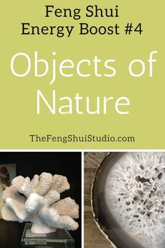 Gathering your own Objects of Nature such as shells or geodes and adding them to your #fengshui #homedecor provides an energy boost to your #decoration and energy. http://thefengshuistudio.com/feng-shui/feng-shui-energy-boost-4-objects-of-nature/
