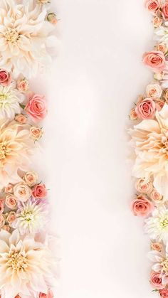 Imgur Post - Imgur Pink Wallpaper Desktop, Flower Iphone Wallpaper, Flowery Wallpaper, Flower Backgrounds, Aesthetic Iphone Wallpaper, Cellphone Wallpaper, Aesthetic Wallpapers, Wallpaper Backgrounds, Wall Paper Phone