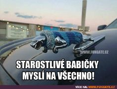 Starostlivé babičky myslí na všechno! Great Memes, Good Jokes, Funny Jokes, Jokes Quotes, Dreamworks, Make Me Smile, Feel Good, Haha, Funny Pictures