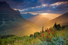 Glacier National Park Montana.  At sunrise along Logon Pass