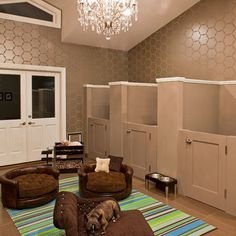 Rooms For Pets Design Ideas,  Pretty Fancy for our two :)