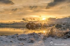 Sunrise over Sometimes Island in Woman's bay, Kodiak, Alaska, This snowy landscape is a favorite among the locals. We Alaskans love our snow!!! Image by Melissa Baines graphic design and photography.