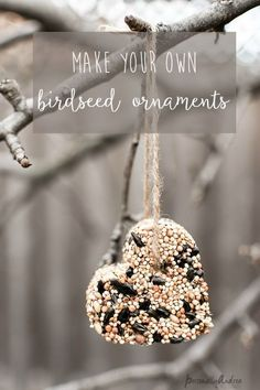 How to make birdseed ornaments.  Pretty for gift-giving and will attract birds to your backyard.  Make them in a heart shape for Valentine's Day.