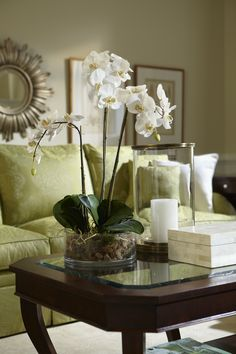 <p>Graceful and exotic, the white orchid has symbolized integrity, nobility, and luxury for centuries. Our enduring phalaenopsis with three glorious spikes captures the artistry and spirit of natural
