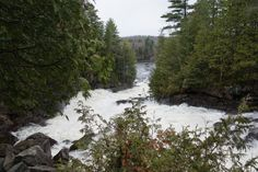 Oxtongue River-Ragged Falls Provincial Park | DWIGHT | See 53 reviews, articles, and 24 photos of Oxtongue River-Ragged Falls Provincial Park, ranked No.2 on TripAdvisor among 11 attractions in Dwight. | TripAdvisor