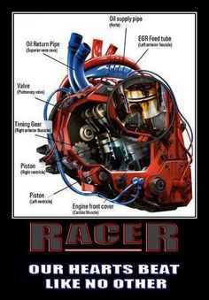 y Gear head heart Sprint Car Racing, Dirt Track Racing, Auto Racing, Nhra Drag Racing, Car Jokes, Car Humor, Us Cars, Race Cars, Racing Quotes