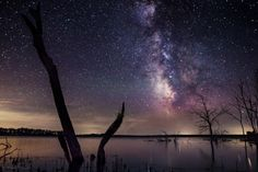 Milky Way Tree by Aaron J. Groen on 500px