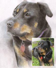 Watercolor custom pet portrait. Custom dog portrait. by madareli
