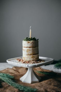 vanilla cake, vanilla frosting, and a marzipan succulent — molly yeh Vanillekuchen, Vanillezuckerguss und ein Marzipansucculent Sweet Recipes, Cake Recipes, Dessert Recipes, Vanilla Frosting, Vanilla Cake, Buttercream Frosting, Marzipan, Mini Cakes, Cupcake Cakes