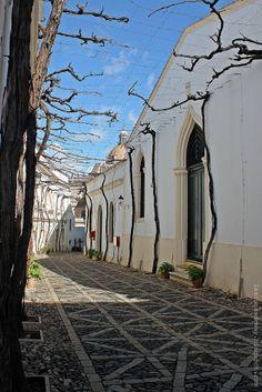 Jerez de la Frontera.  Bodegas González-Byass - Tío Pepe