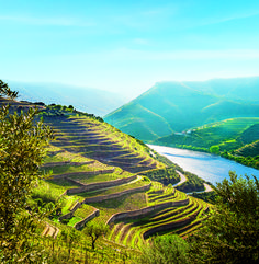 Secrets Itinerary: Top Places In The Douro Valley Douro Portugal, Portugal Travel, Top Place, The Good Place, Douro River Cruise, Valley Landscape, Big Sur California, Douro Valley, Wanderlust