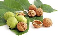 Chandler walnut