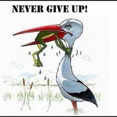 Retired teacher Lou Ellen Brown says the teacher's motto is: Never Give Up. Positive Quotes, Motivational Quotes, Inspirational Quotes, Wisdom Quotes, Love Quotes, Calm Quotes, Sport Quotes, Quotes Quotes, Pictures With Deep Meaning