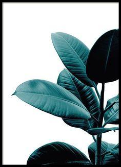 Posters online. Köp prints, affischer och planscher på Desenio.se