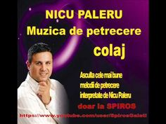 NICU PALERU - COLAJ MELODII DE PETRECERE (AUDIO HD  SPIROS GALATI)
