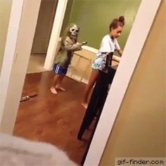 Scare Prank Gone Wrong | Gif Finder – Find and Share funny animated gifs