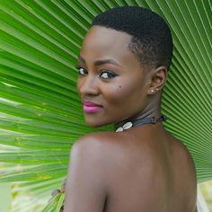 @iamhamamat Short Natural Haircuts, Short Afro Hairstyles, Natural Hair Cuts, Natural Hair Styles, Bald Hair, Natural Hair Inspiration, Cut My Hair, Fade Haircut, African Beauty